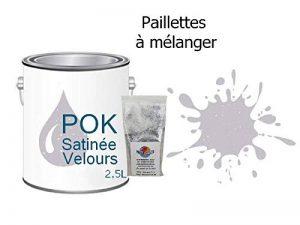 Peinture Pailletée Acrylique pour murs Satin Lessivable 2,5L - Lilas Parme - POK SATIN - 10m²/L de la marque Pok image 0 produit