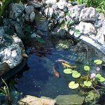 peinture piscine epoxy TOP 0 image 4 produit