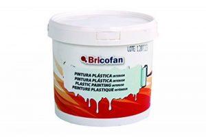 peinture plastique pour mur intérieur TOP 9 image 0 produit