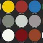 Peinture pour sol de garage, cave ou balcon - Convient pour l'intérieur et l'extérieur - Plusieurs couleurs au choix (blanc, jaune, rouge, bleu, vert, gris, marron, noir, incolore, terracotta) de la marque CAIRCON image 1 produit