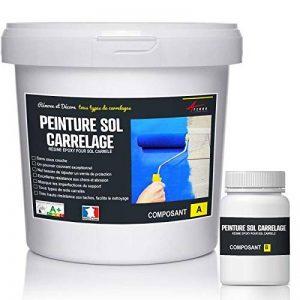 PEINTURE SOL CARRELAGE - résine époxy pour sol carrelé - RAL 9001 Blanc crème, Kit 1kg jusqu'a 5m² pour 2 couches de la marque ARCANE-INDUSTRIES image 0 produit