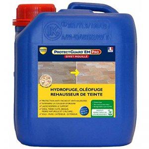 Protectguard Effet Mouillé Premium - Intense - 2 L de la marque Guard-Industrie image 0 produit