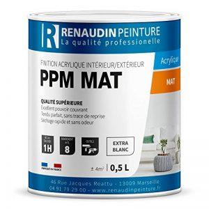 Renaudin Peinture 121301 PPM - PEINTURE ACRYLIQUE - FINITION MAT - MUR & PLAFOND - INTÉRIEUR/EXTERIEUR - BLANC - 0,5L de la marque Renaudin Peinture image 0 produit
