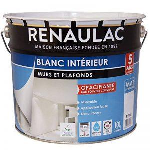 Renaulac Peinture intérieur Murs & Plafonds Bicouche Acrylique Blanc Mat 10L - 100m² de la marque Renaulac image 0 produit