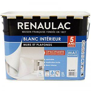 Renaulac Peinture intérieur Murs & Plafonds Bicouche Acrylique Blanc Mat 5L - 50m² de la marque Renaulac image 0 produit