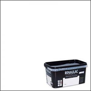 Renaulac Peinture monocouche multisupports Blanc Satin 2,5L - 25m² de la marque Renaulac image 0 produit