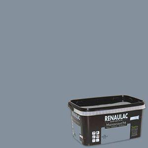 Renaulac Peinture monocouche multisupports Gris Mercure Satin 2,5L - 25m² de la marque Renaulac image 0 produit