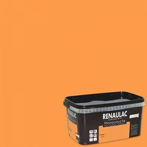 Renaulac Peinture monocouche multisupports Orange Satin 2,5L - 25m² de la marque Renaulac image 0 produit