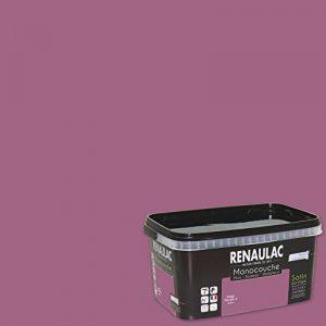 Renaulac Peinture monocouche multisupports Violet Zinzolin Satin 2,5L - 25m² de la marque Renaulac image 0 produit