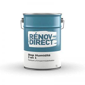 Rénovdirect Stop Humidité 3 en 1, Peinture d'Imperméabilisation Hydrofuge, Anti-Moisissure, 5L Blanc de la marque Rénovdirect image 0 produit