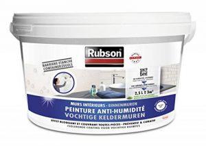 Rubson Stop Humidité Murs de Cave Blanc Seau plastique 2,5 L de la marque Rubson image 0 produit