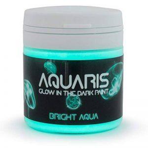 SpaceBeams Peinture Brillante dans Le Noir, Aquaris 50ml (1.7 FL oz), Aqua Brillant Couleur (Clair Bleu/Turquoise) de la marque SpaceBeams image 0 produit