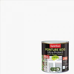 Syntilor - Peinture Bois Ultra Protect Blanc Brillant RAL 9016 0,5L de la marque Syntilor image 0 produit