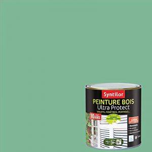 Syntilor - Peinture Bois Ultra Protect Vert Olivier Satiné 0,5L de la marque Syntilor image 0 produit