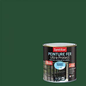 Syntilor - Peinture Fer Ultra Protect Vert Basque Satiné 0,5L de la marque Syntilor image 0 produit