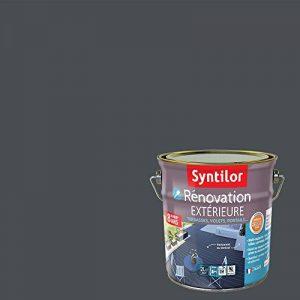 Syntilor - Rénovation Extérieure Terrasses, Volets, Portails Tenue 8 ans* Gris Anthracite 2L de la marque Syntilor image 0 produit
