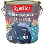 Syntilor - Rénovation Extérieure Terrasses, Volets, Portails Tenue 8 ans* Gris Anthracite 2L de la marque Syntilor image 1 produit
