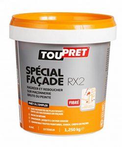 Toupret 251080 Enduit de rebouchage extérieur Spécial Façade RX2 pâte 1,25 kg de la marque Toupret image 0 produit