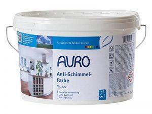 traitement anti moisissure mur TOP 0 image 0 produit