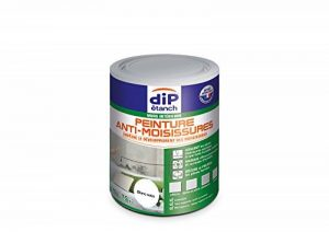traitement anti moisissure mur TOP 10 image 0 produit