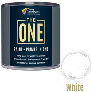 Une Peinture, un manteau, Multi Surface Peinture pour bois, métal, plastique, intérieur, extérieur, Blanc, brillant, 250ml de la marque THE ONE image 0 produit