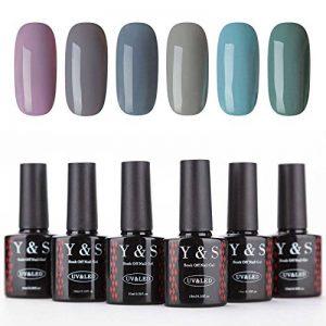 Vernis à Ongles Gel - Y&S UV LED Vernis à Ongles Gel Soak Off Nail Polish Cadeau Kit 6 Couleurs x 10ml, lot Taupe et Verre de la marque Y-S image 0 produit