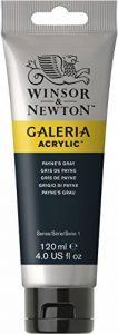 Winsor & Newton Galeria Peinture acrylique 120ml Gris Payne de la marque Winsor-Newton image 0 produit